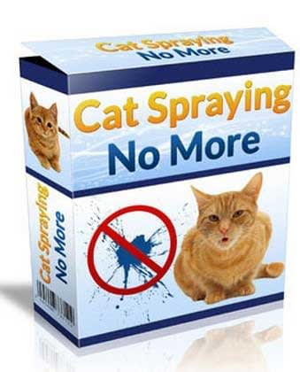 Cat Spraying No More, All Best Reviews