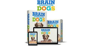 Brain Training for Dogs, All Best Reviews